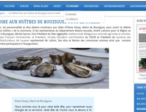 LA 34ÈME FOIRE AUX HUÎTRES DE BOUZIGUES SOUS LE SOLEIL (Thau Infos)
