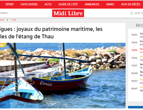 Bouzigues : joyaux du patrimoine maritime, les nacelles de l'étang de Thau (Midi Libre)