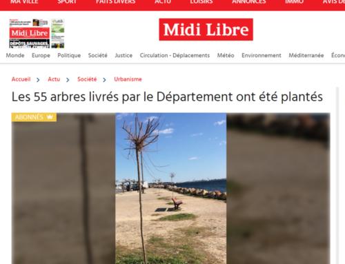 Les 55 arbres livrés par le Département ont été plantés